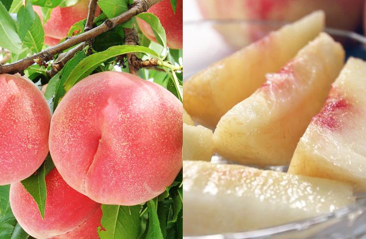 旬の桃を30分食べ放題で。1個もぎ取りお土産付