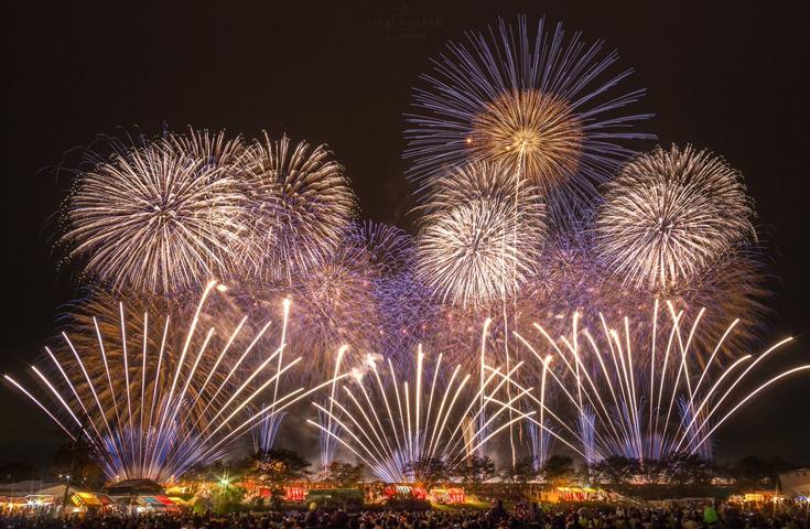 花火技巧の極致「内閣総理大臣賞」を選定する大会