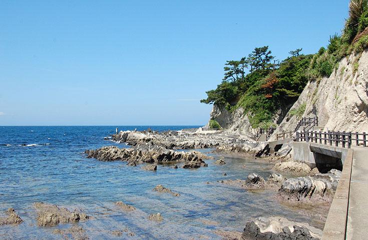 自然が創造した美しい岩場が続く荒崎海岸