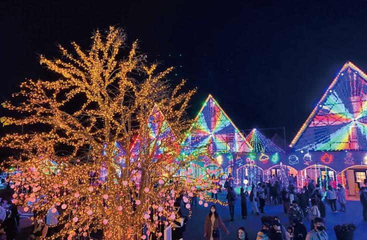 冬の風物詩「東京ドイツ村のイルミネーション」を堪能
