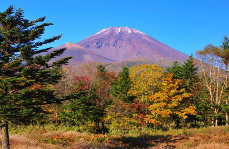 富士スバルラインを紅葉絶景ドライブ