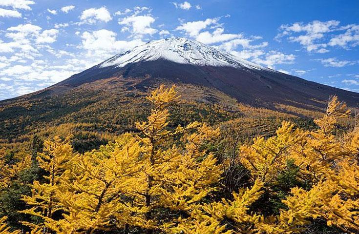 富士山奥庭で紅葉プチトレッキング