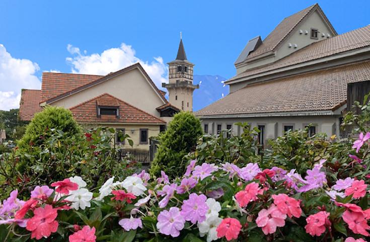 季節ごとに花々が咲く庭園を散策