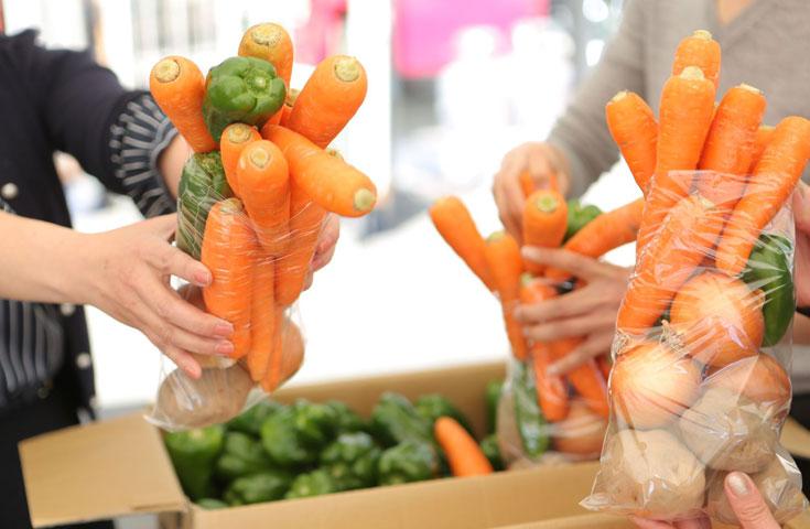 旬の野菜を詰めれるだけ!「野菜つめ放題」体験!
