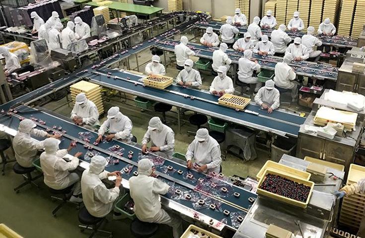 桔梗屋では工場見学も楽しめます。