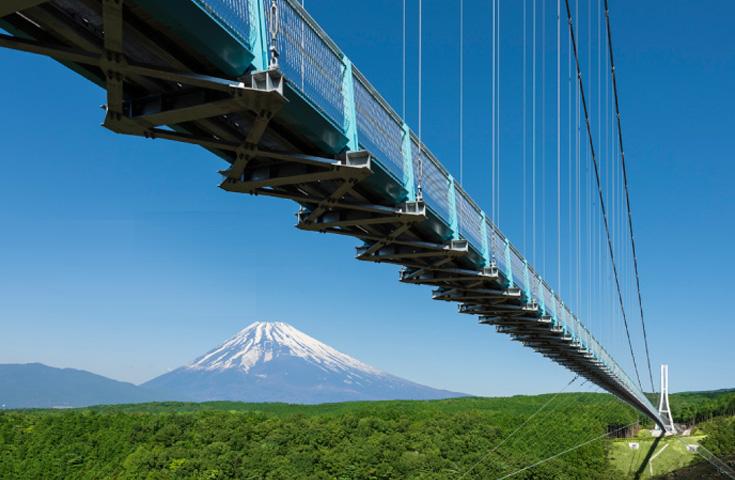 富士山を見渡す絶景のパノラマビュー(渡橋料は各自負担)