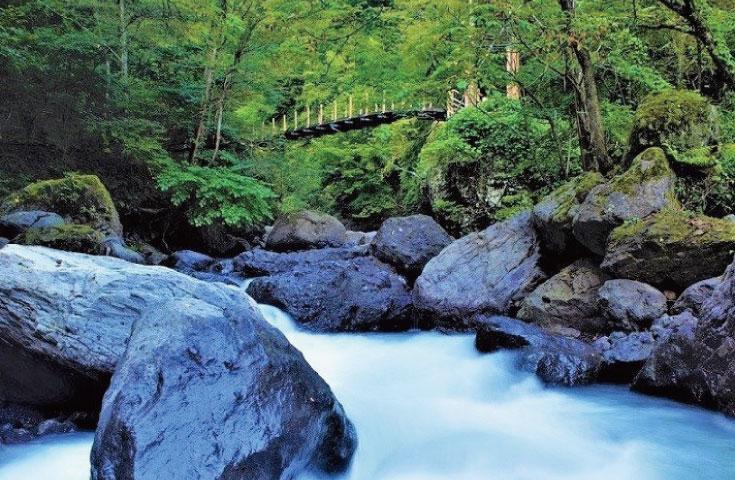 渓谷を流れる清流