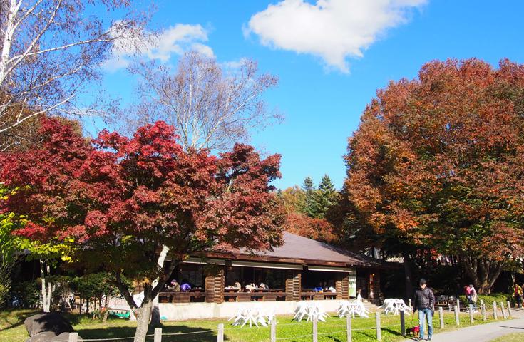 紅葉に染まる、八ヶ岳リゾートアウトレット