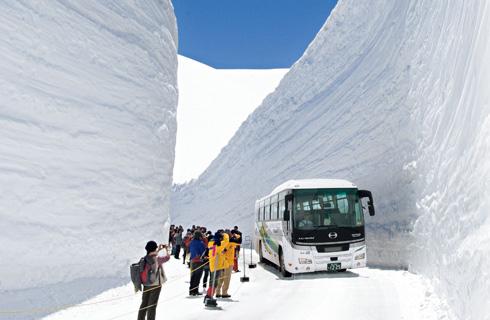 【宿泊・黒部ビューホテルご指定プラン】世界に誇る日本の絶景!黒部立山アルペンルート『雪の大谷』&雪解けの富士山の絶景鑑賞と甲州ワインビーフのの絶品ステーキも堪能